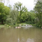 Pond with fountain and wheeping willow